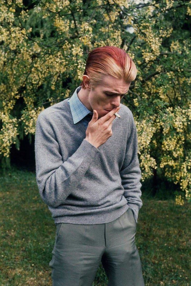 Bowie by Andrew Kent, 1976.