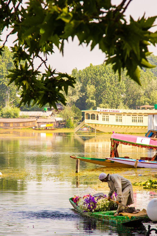 Nigeen Lake - India (by Saad Akhtar)