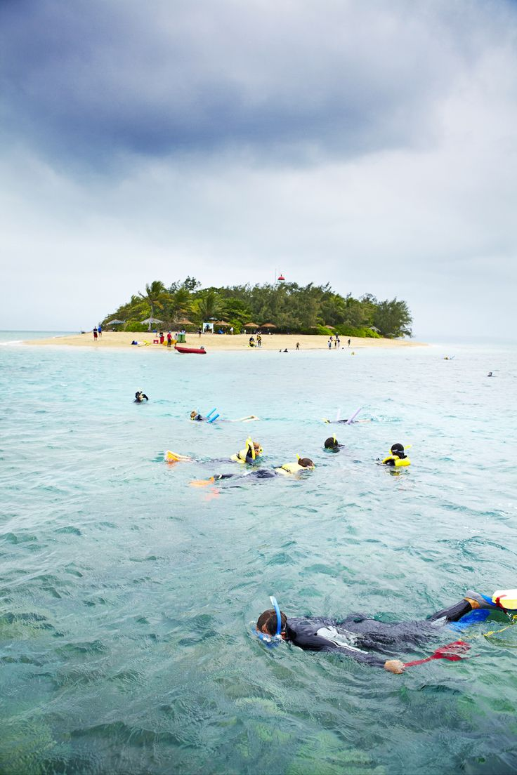 Snorkelling at Low Isles - Lonely Planet