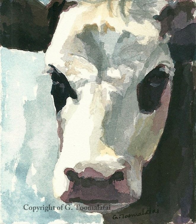 Cow painting Cow original watercolor painting Cow face painting Cow art Miniature cow painting White faced black cow painting by GWENSART on Etsy