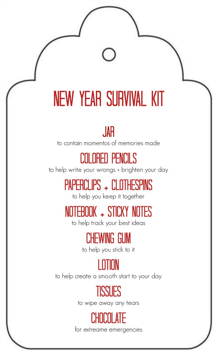 DIY New Years Survival Kit