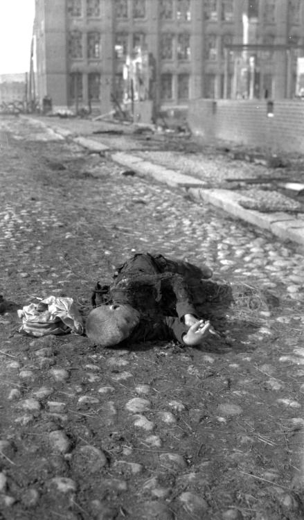 Dead child on the street in Tampere. Finnish Civil War, 1918 via reddit