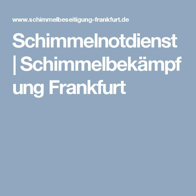 Schimmelnotdienst | Schimmelbekämpfung Frankfurt