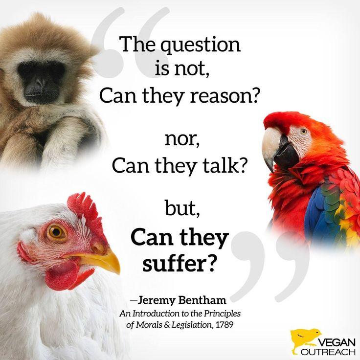 Go vegan ✌