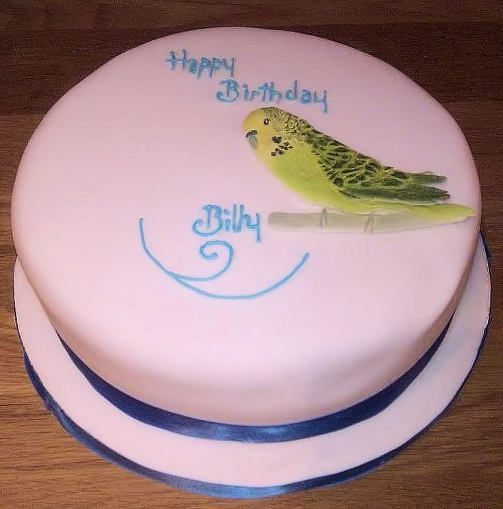 Cake Art By Bec : 1869 best images about birds on Pinterest