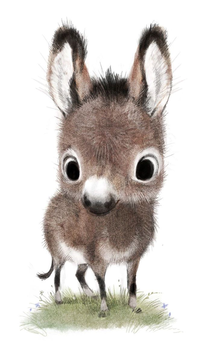 Incredibly Cute Animal Illustrations By Sydney Hanson Will Make You Smile