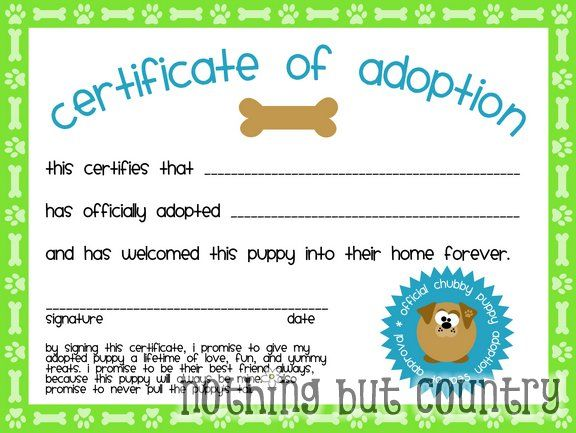 Puppy Certificate of Adoption
