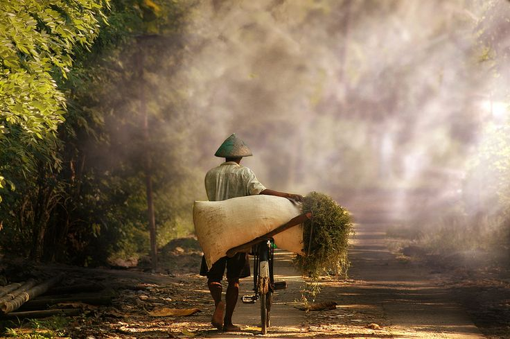Pulang Ngarit by 3 Joko on 500px