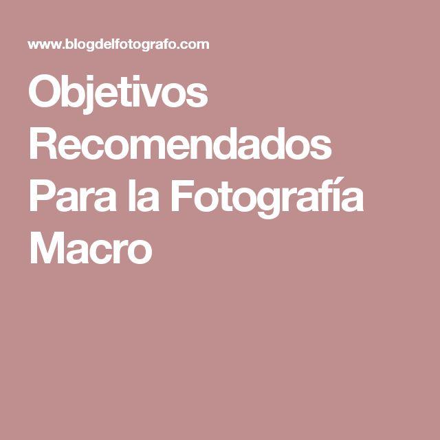 Objetivos Recomendados Para la Fotografía Macro