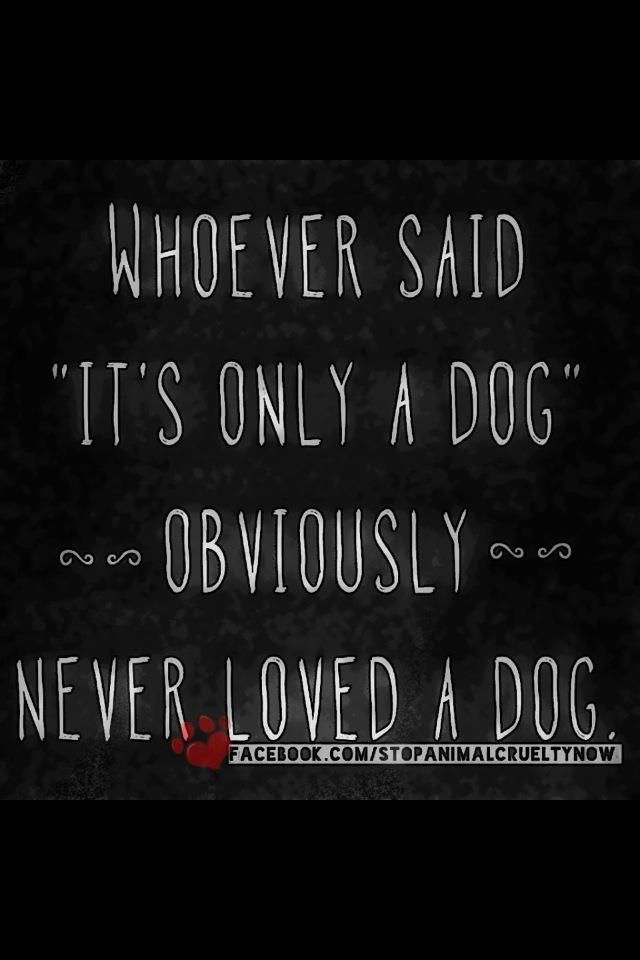 """Whoever said """"it's only a dog"""" OBVIOUSLY never loved a dog <3 find #love and #dog lovers with us at You Must Love Dogs Dating!"""