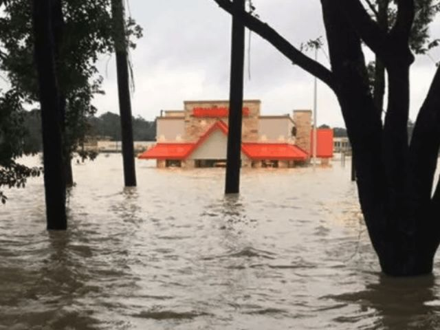 Photo: Whataburger   by Bob Price3 Sep 2017Houston, TX0 				3 Sep, 20173 Sep, 2017  HOUSTON, Texas — A New York firefighter currently working as a first responder in the aftermath of Hurricane Harvey got his first taste of a Texas icon — Whataburger. His reaction tells the whole...