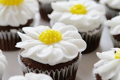 Two ways to pipe a daisy from buttercream frosting! Both methods are fun and easy and make the most beautiful flower!