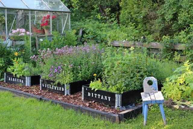 Pikkutalon elämää: lavakauluksista kasvulaatikot