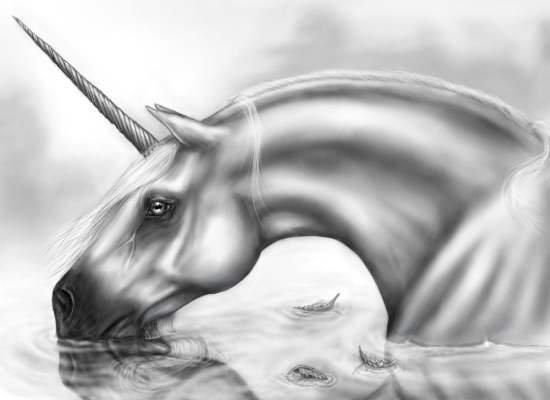 Unicornio de Katy Rewston.