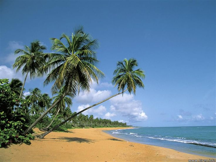 Puerto Rico...Wish I was there with you!
