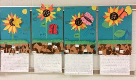 S.O.L. Train: Moments That Count in the Classroom: Sunflower Activity and Plant FREEBIE!