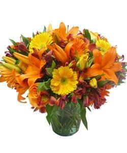 Rosas, astromelias, margaritas, gerberas, y lirios en tonos naranjas y amarillos, alegran cualquier espacio.