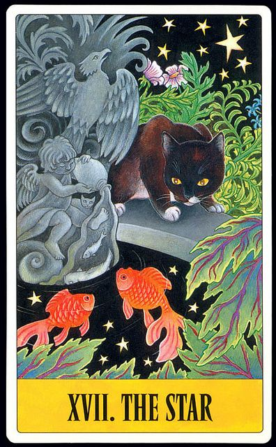 The Star - Tarot for Cats