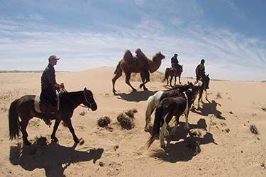 Rando à cheval Désert de Gobi et Steppes de Mongolie - http://www.rando-cheval-mongolie.com/voyages/randonnees-cheval/mongolie-dunes-gobi-steppes-desert-rando-cheval-14j.html
