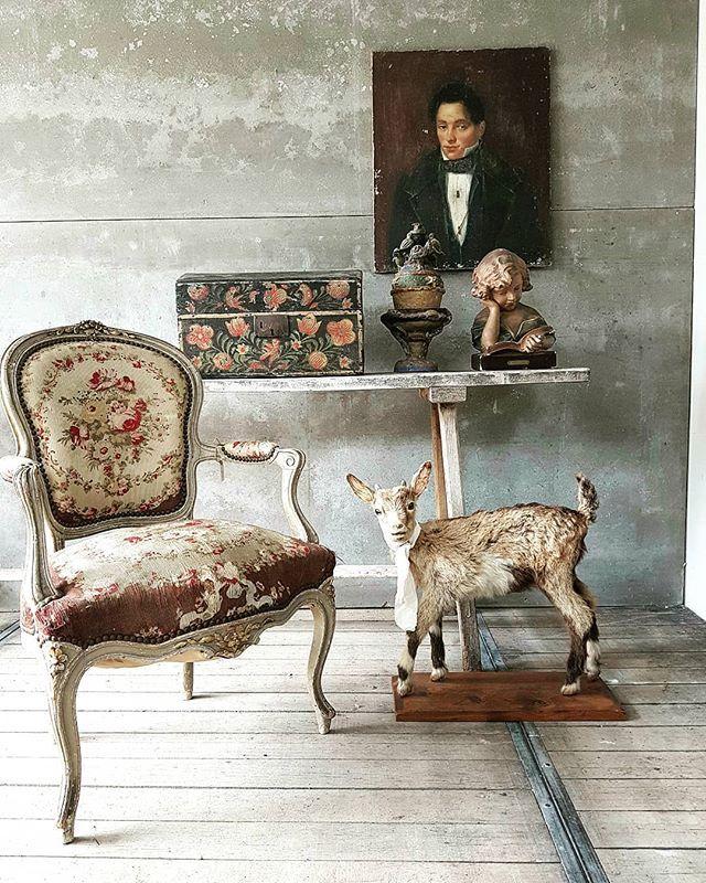 Les Suzannes Rouen Lessuzannes Photos Et Videos Instagram Interior Vignette European Antiques Brocante