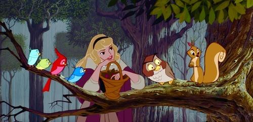 мультфильм, дисней, спящая красавица, белка, сова