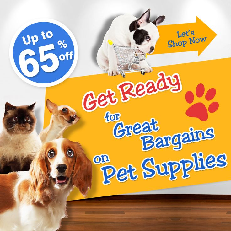 Up to 65% off on pet supplies, that's the best we can do to care about your pets.