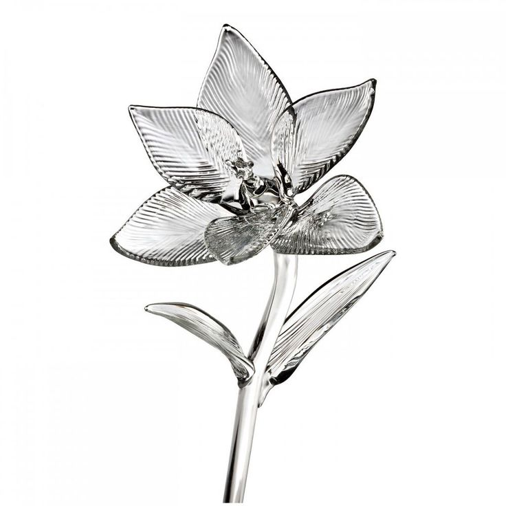"Waterford Crystal Fleurology 6"" Lily Flower New In Black Waterford Gift Box #Waterford"