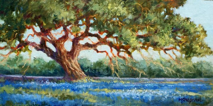 Oil painting--old oak in the Texas bluebonnets--8 x 16 board-- OLD OAK by Mary Shepard. www.maryshepard.com