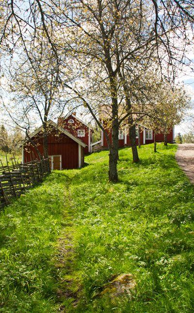 Frühling in Skandinavien.