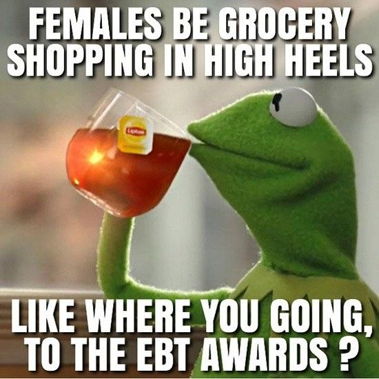 10 New Kermit Memes We Cried Laughing At