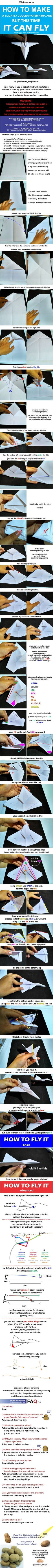 I heard you guys like a paper airplane which can actually fly