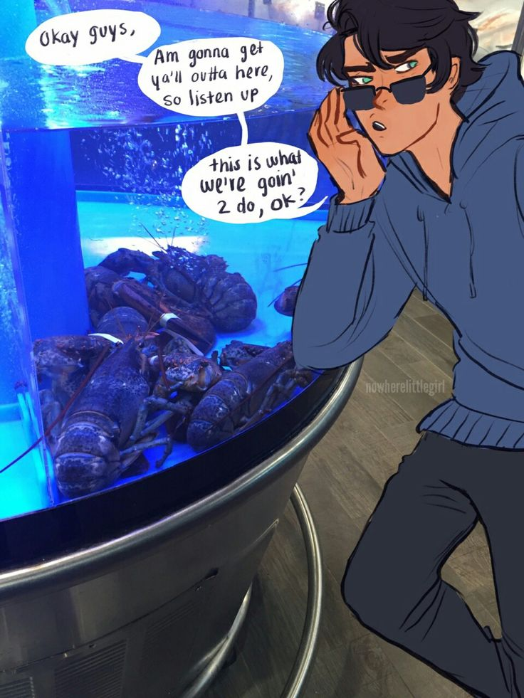 percy would do this to every single aquarium and tanks