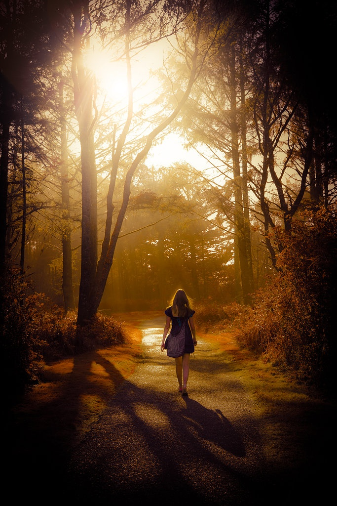 pathway | photo by Heather Romney