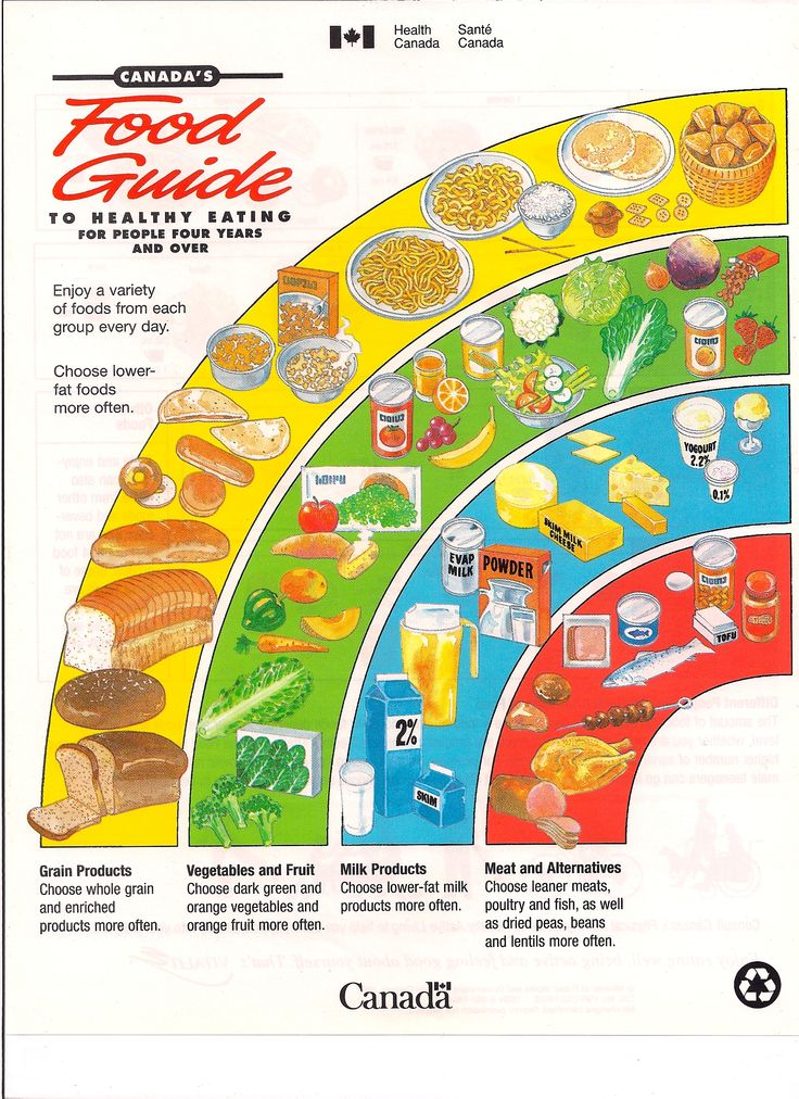Nutrition Guide Canada food guide, Four food groups