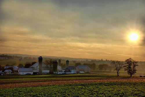 Amish Country Lancaster County Pennsylvania Sunrise Dawn Morning Sun Rays Fog Farm Barns Silo Buggy Horse Field Homestead Idyllic Rural Countryside