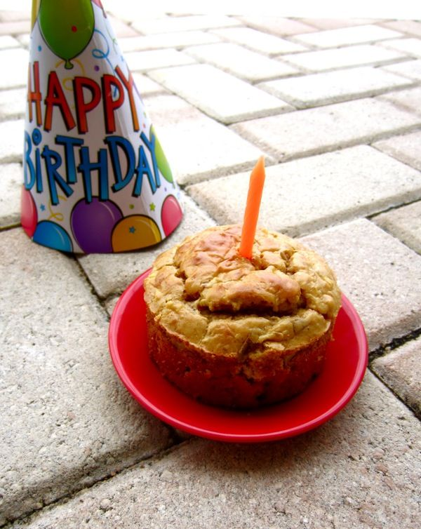 Peanut Butter Apple Doggy Cake--The perfect birthday cake for dogs!