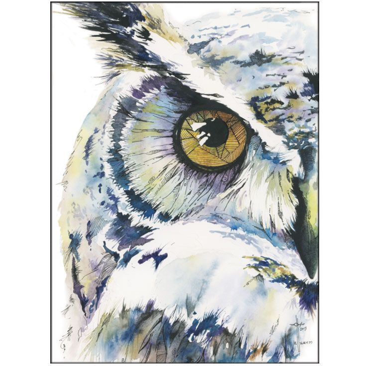 watercolor owl images | Wise Whimsical Owl – Watercolor and Ink | Asmalltowndad's Weblog