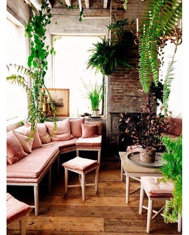 Un salon cosy rempli de plantes