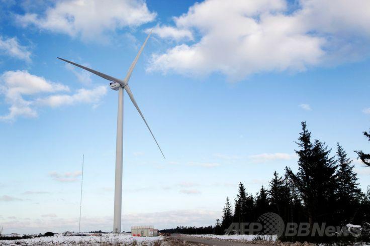 デンマーク北西部ウスタイル(Oesterild)にある試験場に設置された、デンマークの風力発電機メーカー大手ベスタス(Vestas)の風力発電タービン「V164」の試作機(2014年1月24日撮影)。(c)AFP/Vestas Wind Systems A/S ▼31Jan2014AFP|世界最大の風力タービンが試験発電開始、ベスタス発表 http://www.afpbb.com/articles/-/3007549 #Oesterild #Vestas #V164 #Denmark #Danmark