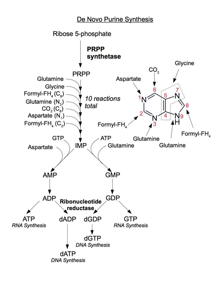 422 best images about biochemistry on pinterest dna for Soil biology and biochemistry