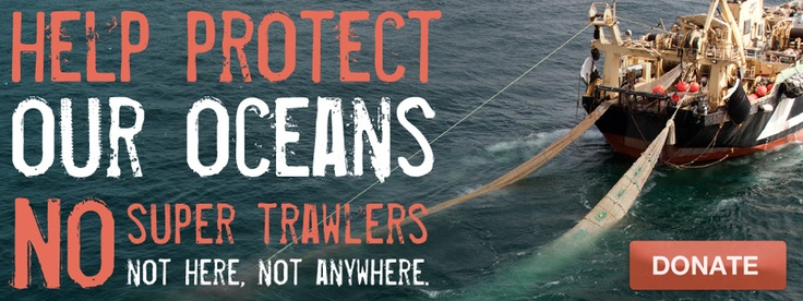 Home | Greenpeace Australia Pacific
