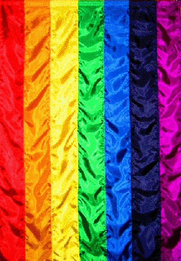 Rainbow flag color...this was the official flag of the International Order of the Rainbow for Girls (IORG) until the 21st century.