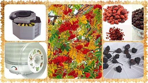 Осенние дары для  Вашего здоровья