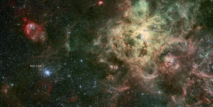 Csillaghalmaz a Tarantula csillagköd árnyékában