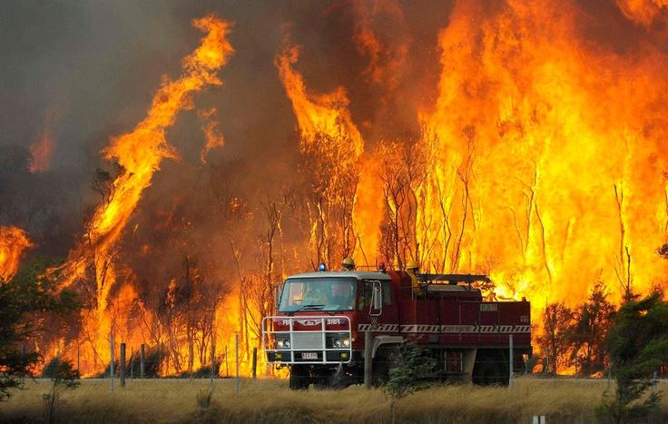Лесные пожары в штате Виктория, Австралия
