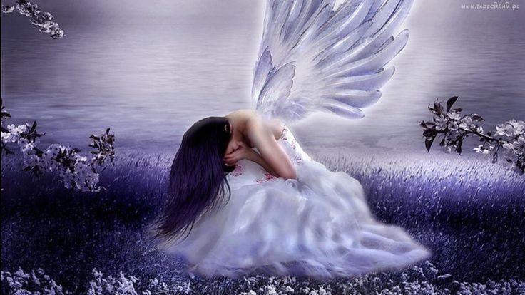 Kobieta, Anioł, Łąka