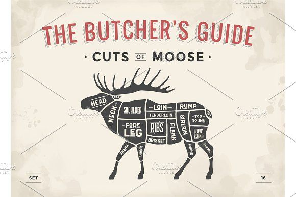 butcher diagram, scheme - moose by foxysgraphic on @creativemarket