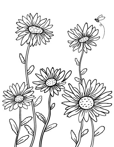Printable daisy coloring page. Free PDF download at http ...
