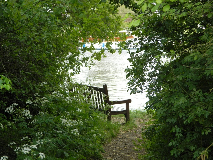 Peaceful seat on The River Thames