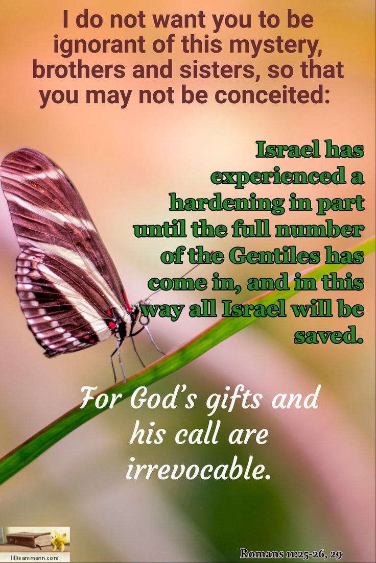 I do not want you to be ignorant of this mystery, brothers and sisters, so that you may not be conceited: / Romans 11:25-26, 29 / For God's gifts and his call are irrevocable. / Israel has experienced a hardening in part until the full number of the Gentiles has come in, and in this way all Israel will be saved.